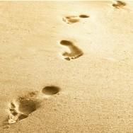 Footsteps2
